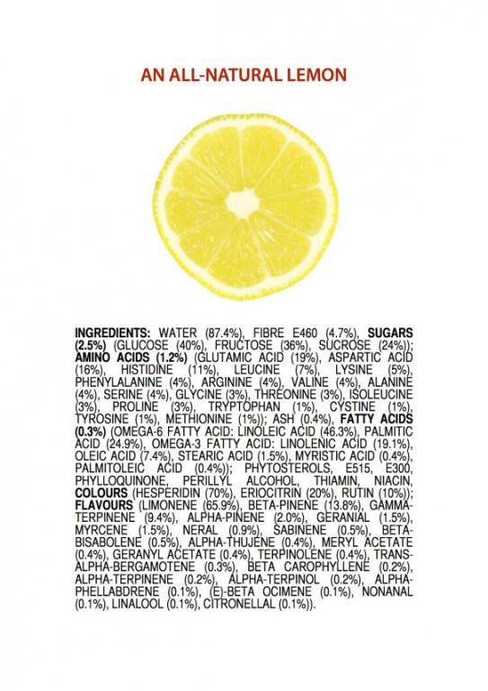 ingredients-of-a-lemon-english.thumb.jpg