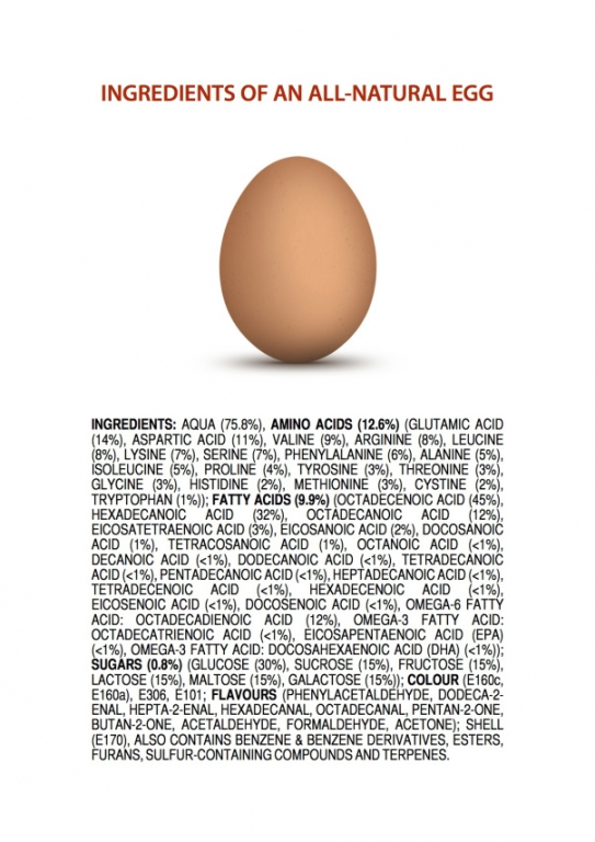 ingredients-of-an-all-natural-egg2.thumb