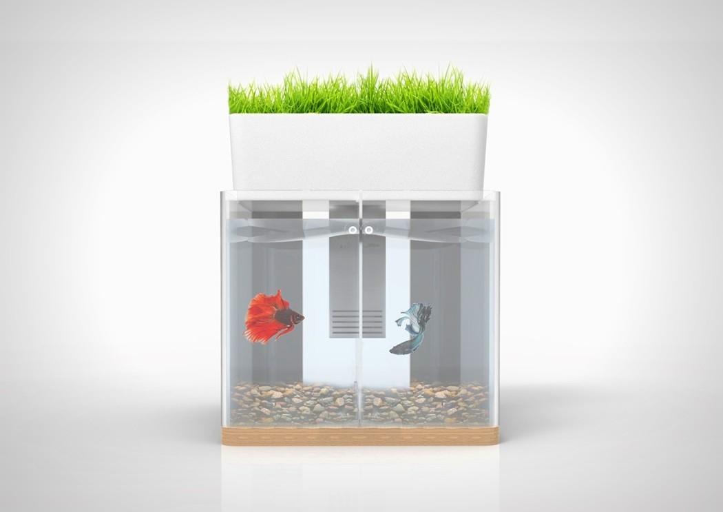 duo_aquarium_2.jpg