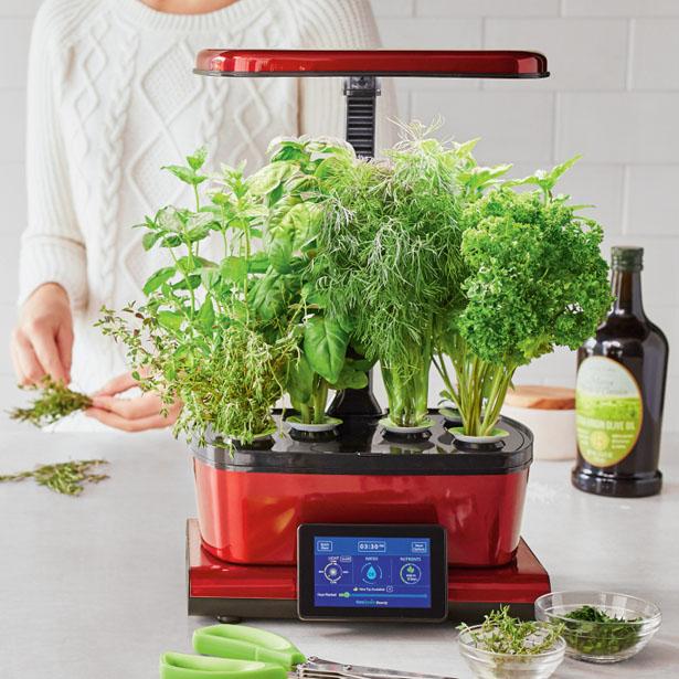 aerogarden-harvest-touch-with-gourmet-herbs-seed-pod-kit1.jpg