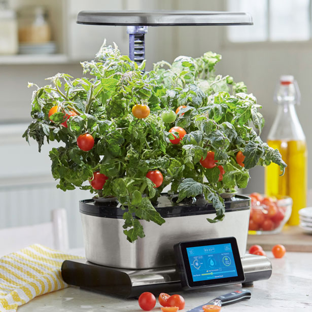 aerogarden-harvest-touch-with-gourmet-herbs-seed-pod-kit3.jpg
