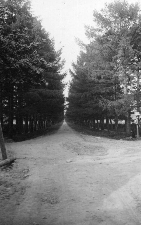 Въезд на Петровский проспект от ж.д станции.jpg
