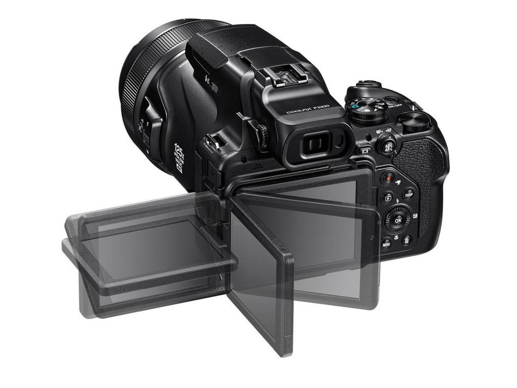 Nikon-p1000-0081.jpg