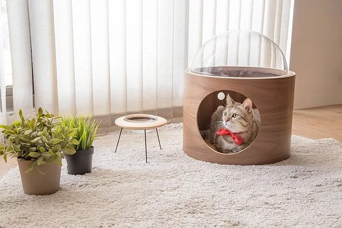 cat-spaceship-bed-myzoostudio-10-5bb5f8c259467-png__700.jpg