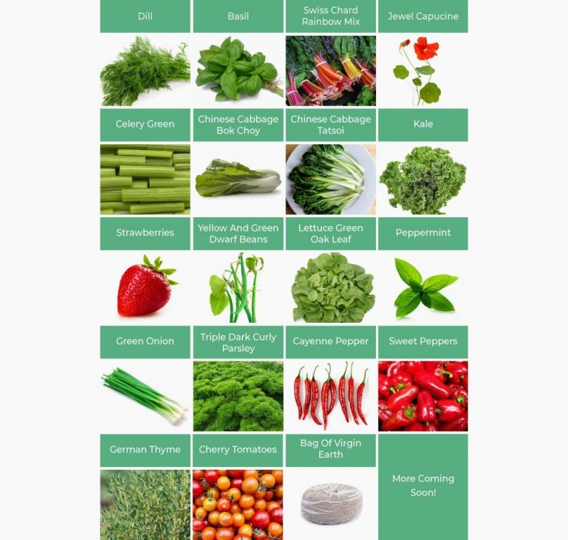 ogarden_smart_gardening_system_02.jpg