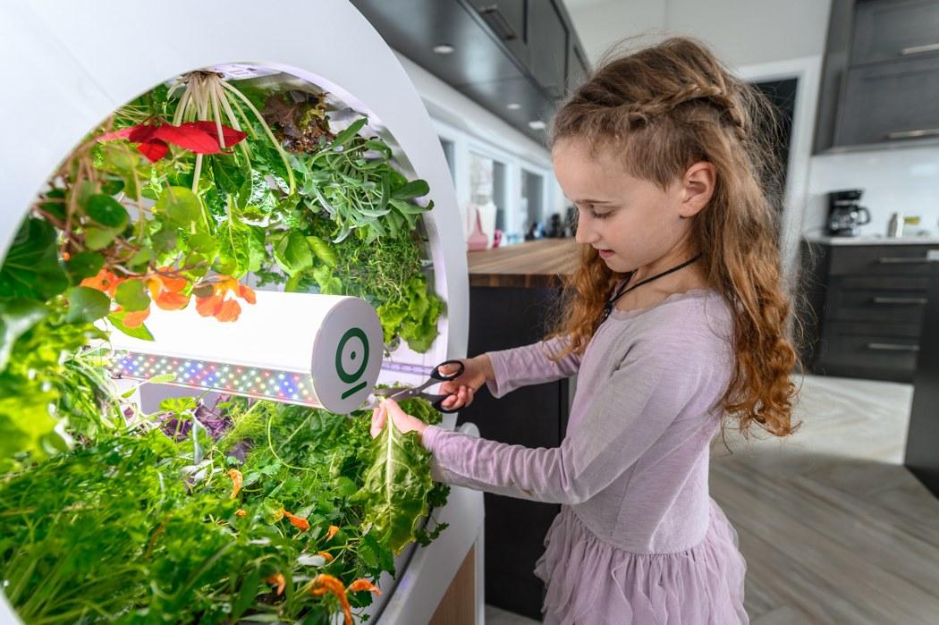ogarden_smart_gardening_system_06.jpg
