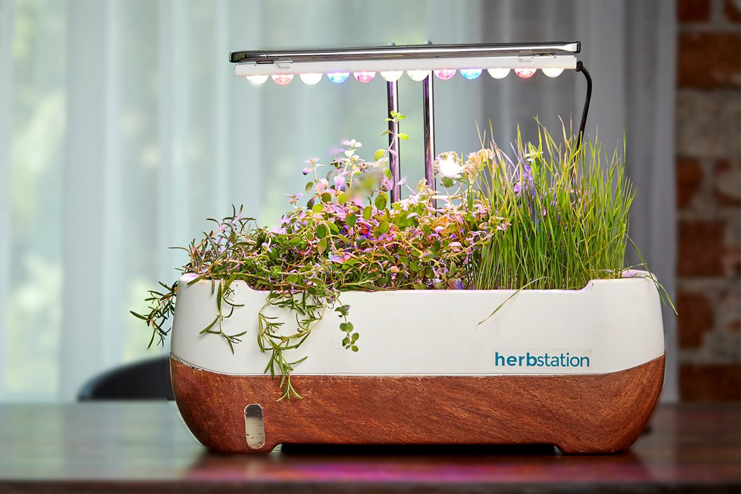 herbstation_soil_less_hydroponics_01.jpg