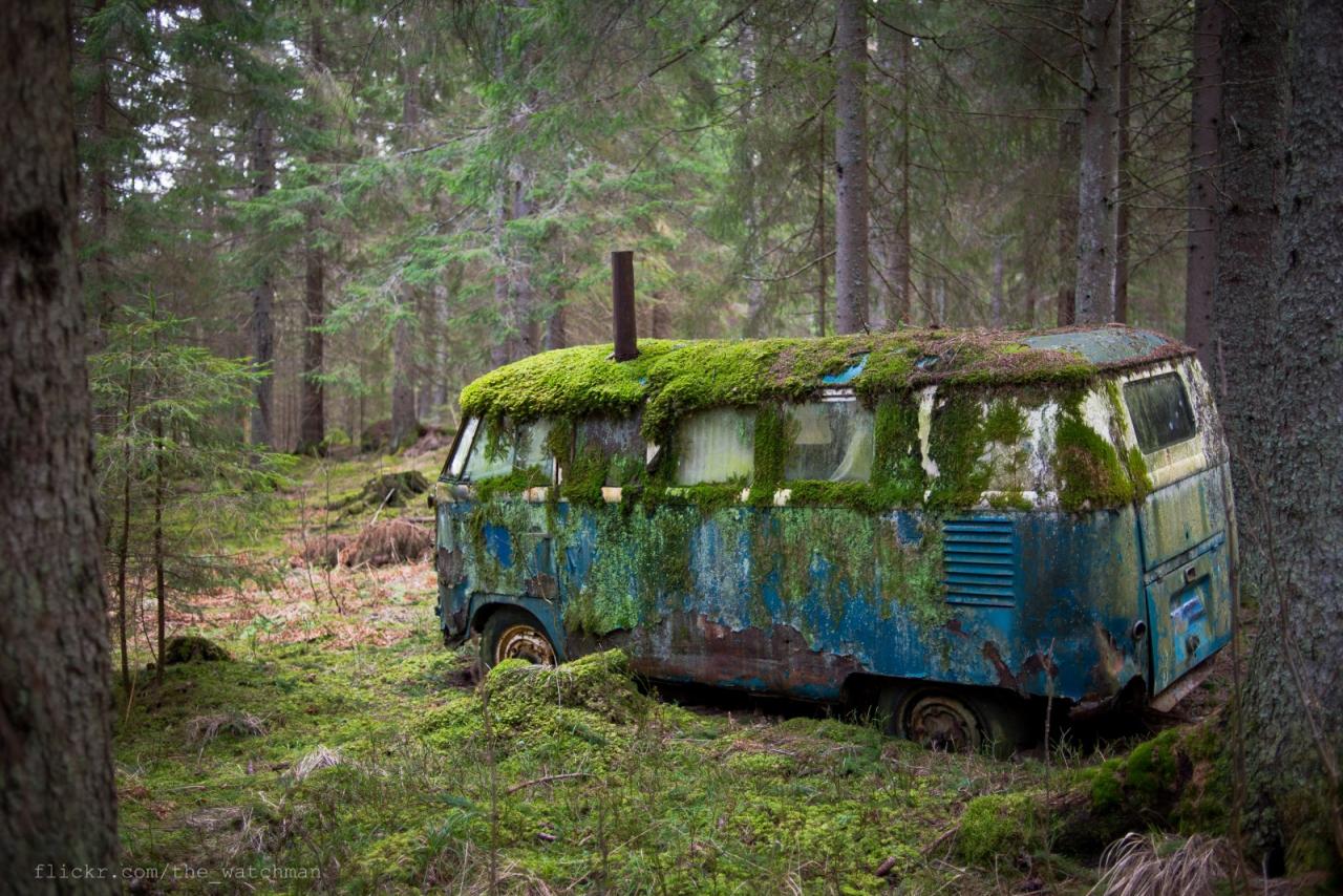 window_vw_volkswagen_1957_sverige_split_rost_skrot-822915.jpg