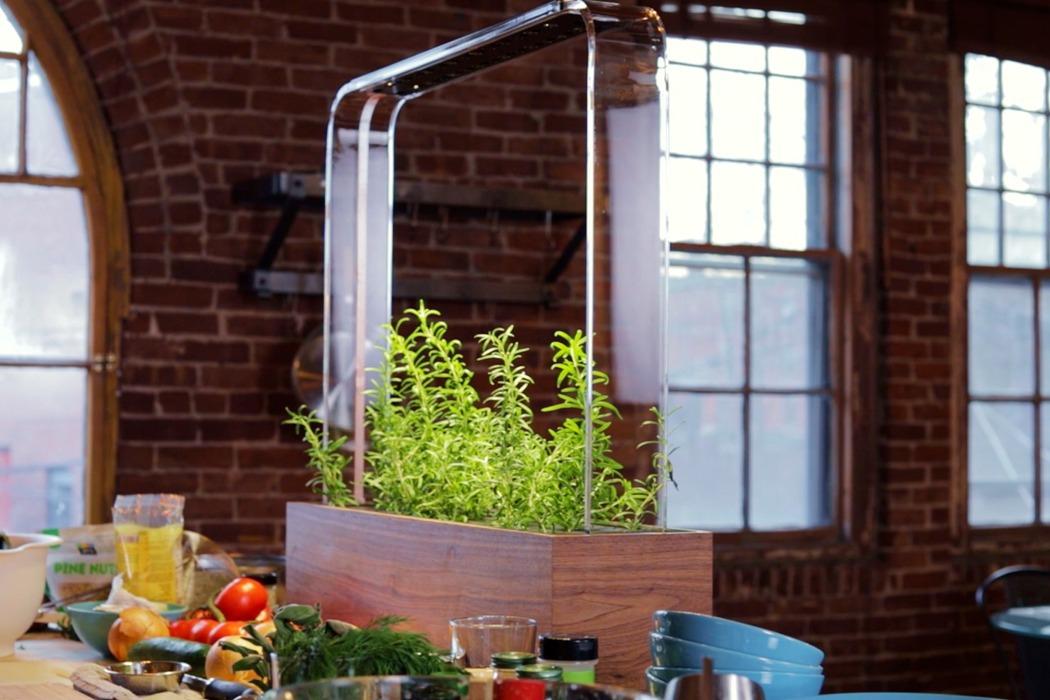 professional_grade_automatic_indoor_garden_for_growing_vegetables_01.jpg