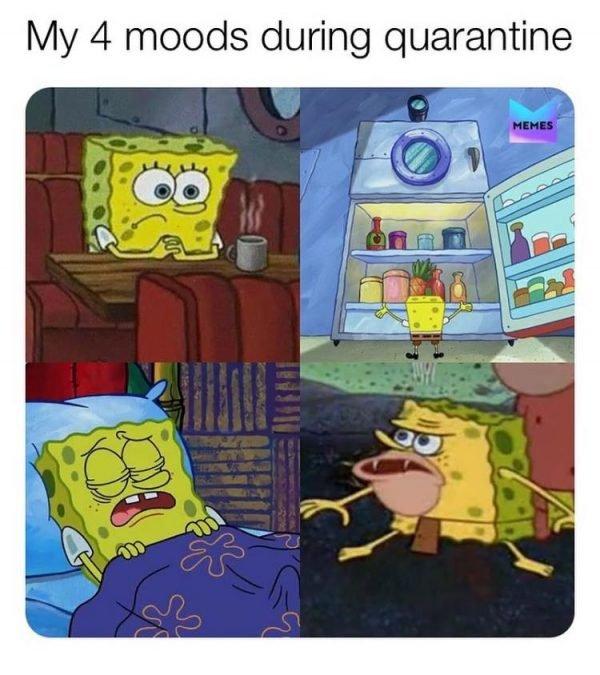 Quarantine-Memes-20[1].jpg