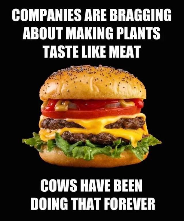 Nice-to-meat-you.jpg