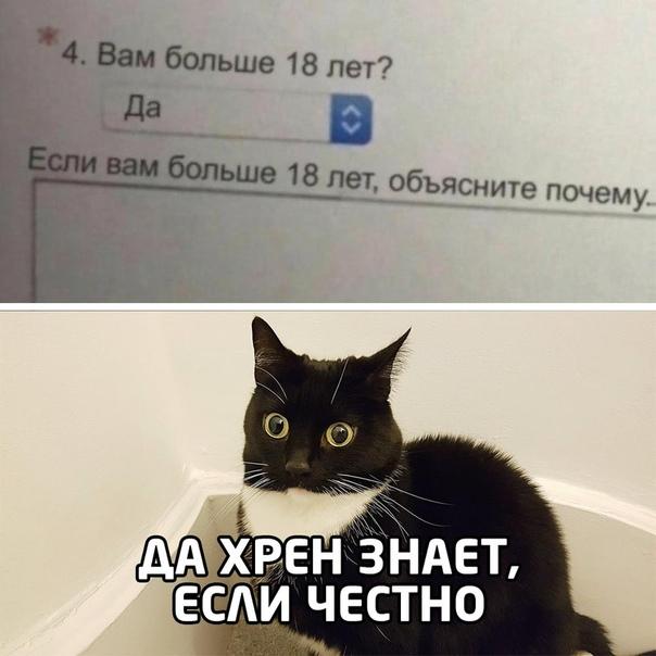 1603384764_14822366[1].jpg