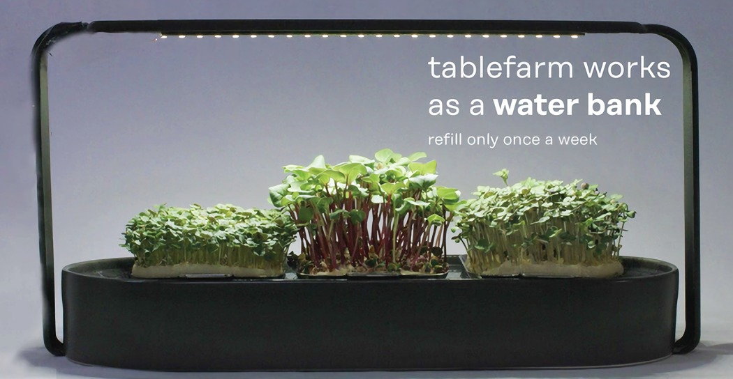 tablefarm_microgarden_designed_to_grow_microgreens_02.jpg
