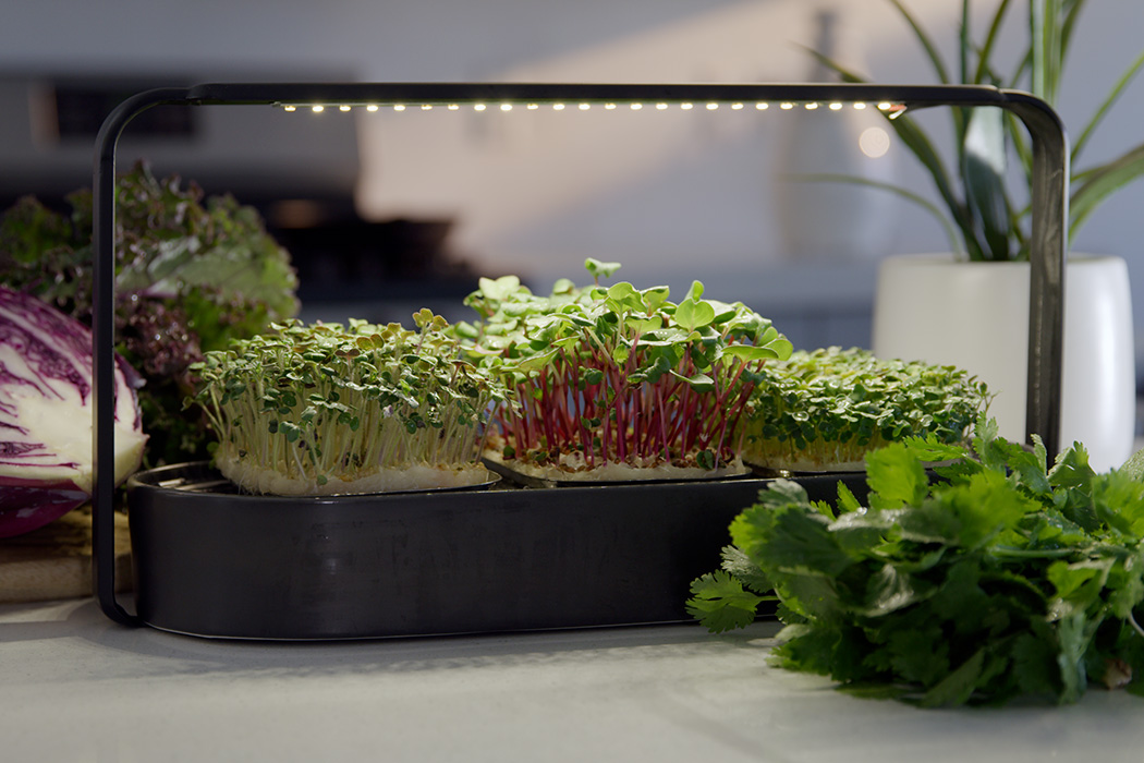tablefarm_smart_indoor_microgarden_layout.jpg