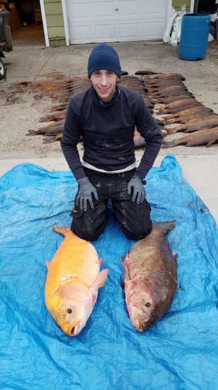 1561266371_amerikanskij-rybak-smog-vylovit-samuju-bolshuju-v-mire-zolotuju-rybku-5.jpg