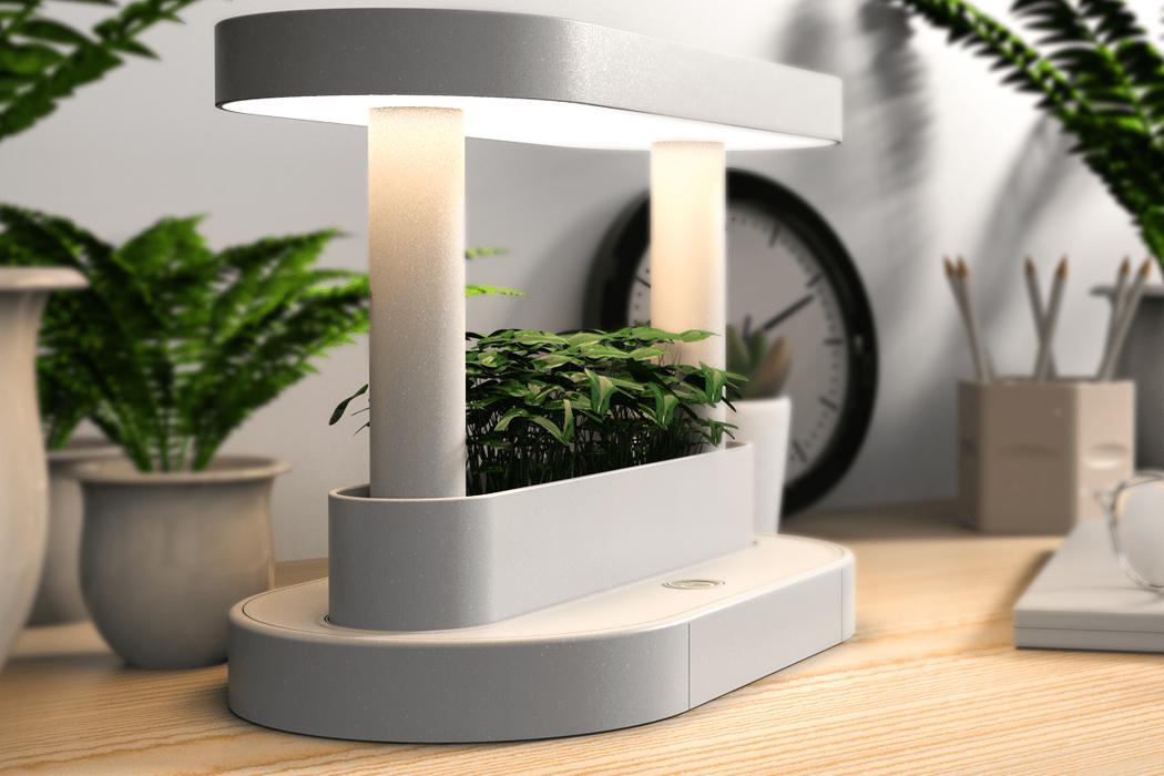 Lumiso-desk-lamp-and-flower-pot.jpg