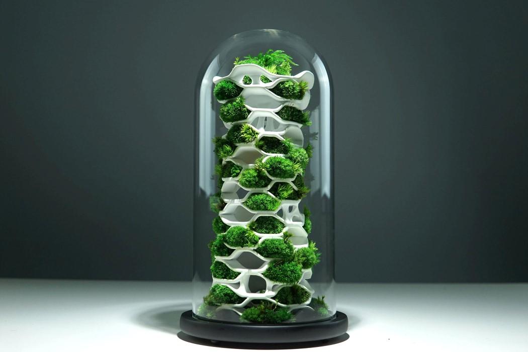 terraliving_chloroplast_2_1.jpg